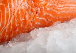 Pedaço de salmão